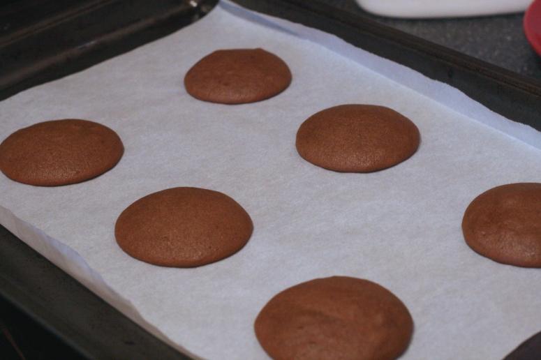 baked horizontal